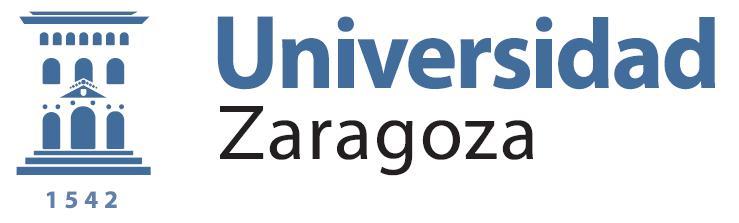 la universidad de zaragoza: